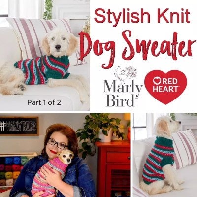 Stylish Knit Dog Sweater-Video Tutorial