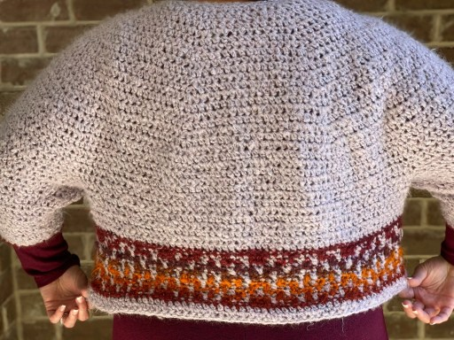 PUMPKIN SPICE CROPPED CROCHET SWEATER back view