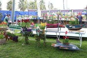Kocaeli Lale Festivali