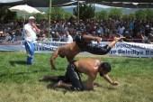 Kızıklı Yağlı Güreşleri'nde şampiyon İsmail Balaban oldu