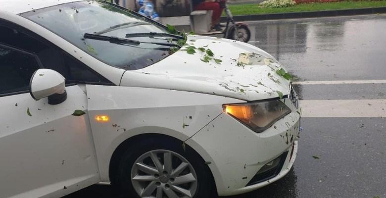 Sakarya'da şiddetli yağış esnasında ağaç aracın üzerine devrildi