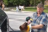 Yaralı ördeğin imdadına zabıta ekipleri yetişti