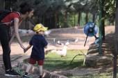 (Özel) Bakan çağrıda bulundu, eğitim merkezi hayvanat bahçesine döndü