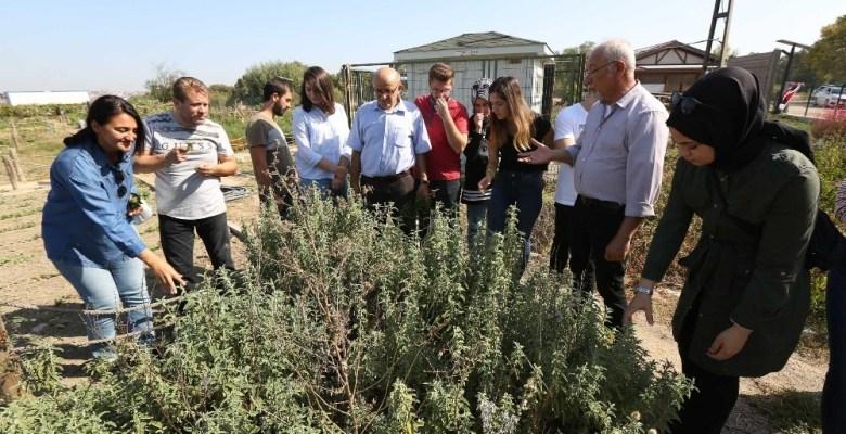Üniversiteliler ekolojik tarımı yerinde inceledi