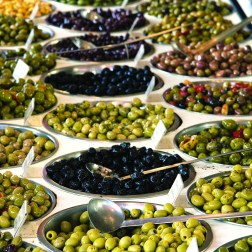 OLIVE PRODUCTION IN TURKEY