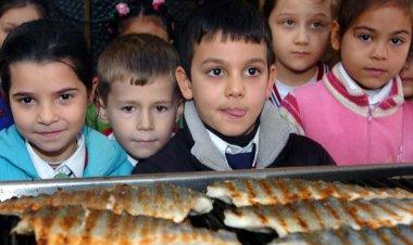 Muğla'da Balık İçin Seferberlik