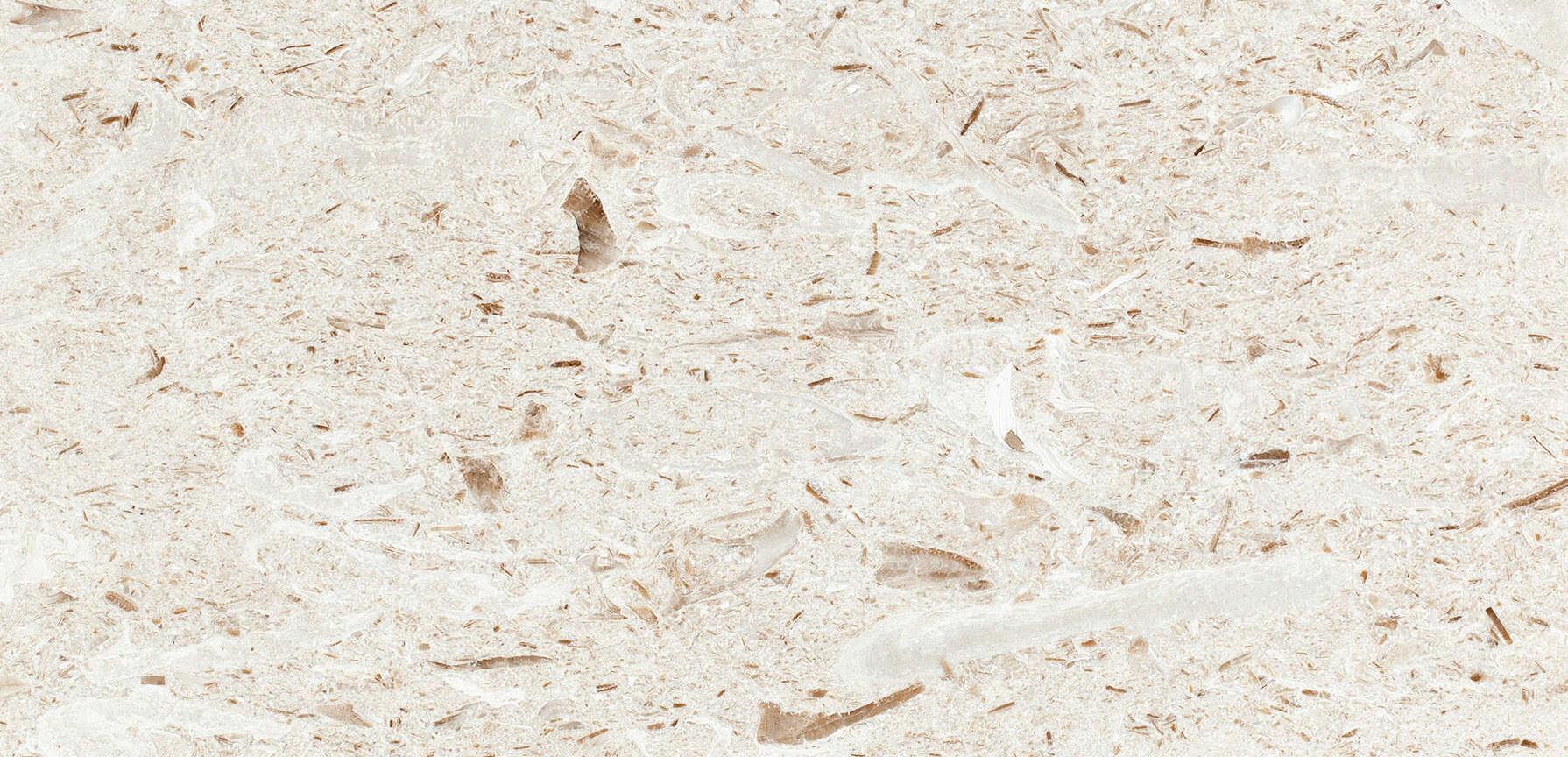 Caliza-turca-recife-fossil-myra-beige-marmol.jpg