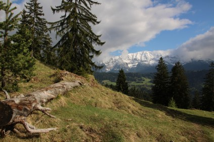 Karwendel in the distance