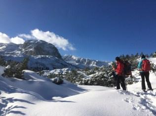 On the Dachstein plateau