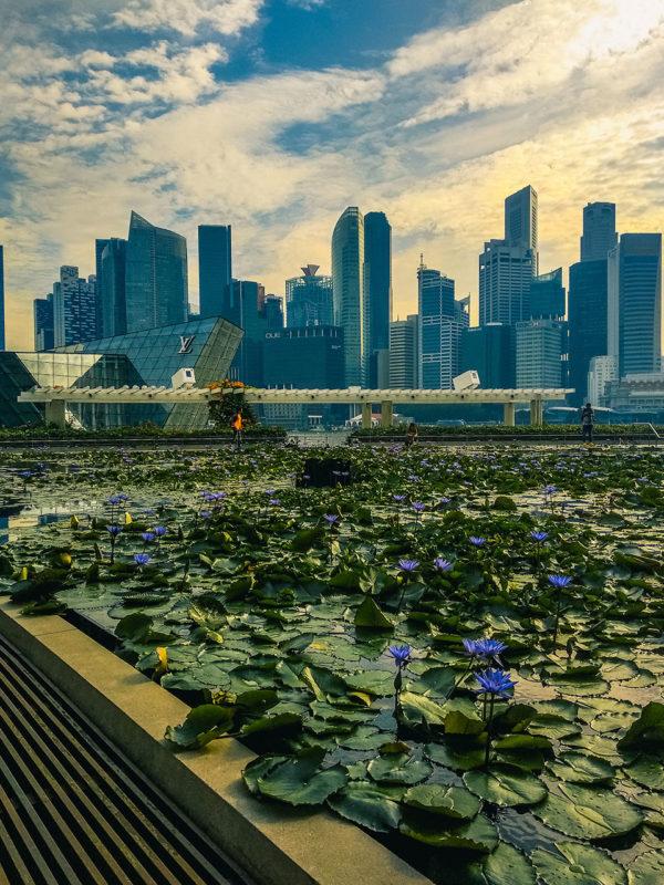 singapur miasto