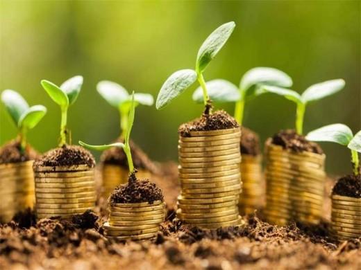 L'économie verte occupe une place de choix dans la stratégie de développement durable mise en place par le Maroc