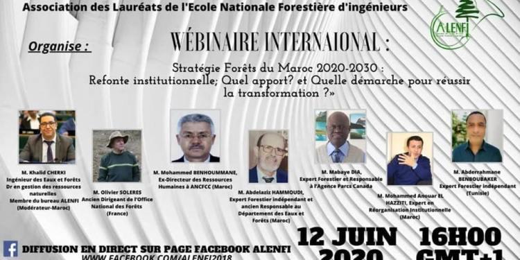 ALENFI: Stratégie Forêts du Maroc 2020-2030 : Refonte institutionnelle; Quel apport? et Quelle démarche pour réussir la transformation