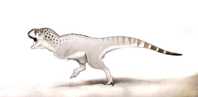 Chenanisaurus Berbericus, le dernier dinosaure au monde découvert au Maroc