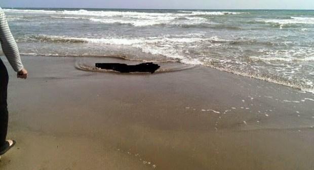 أكادير..مياه شاطئ مارينا تلفظ جثة شاب