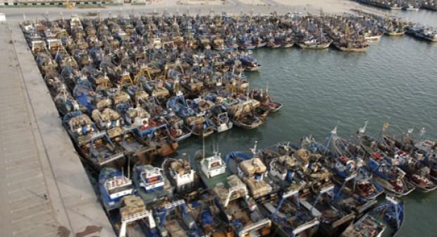 غرفة الصيد البحري باكادير في مخطط لإدماج البحارة في الضمان الإجتماعي