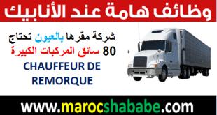 شركة مقرها بالعيون تحتاج 80 سائق المركبات الكبيرة CHAUFFEUR DE REMORQUE