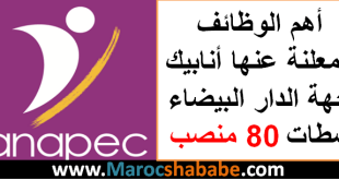أهم الوظائف المعلنة عنها أنابيك جهة الدار البيضاء سطات