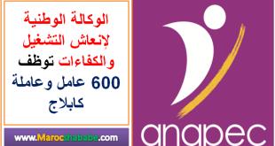 Anapec recrute 600 Opérateurs et Opératrices de câblage électrique