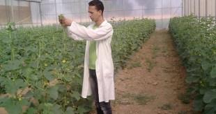 شركة عمانية انابيك تشغل تقني فلاحي