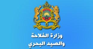 مرشحي مباراة وزارة الفلاحة والصيد البحري قطاع الصيد البحري توظيف 45 منصب