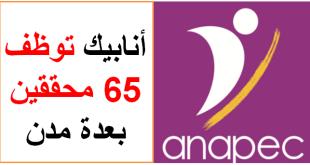 Anapec recrute 65 Enquêteurs sur Plusieurs Villes