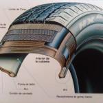 Ilustración de las diferentes partes de un neumático