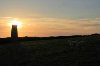 Un four... et deux moutons... méditons tous ensemble