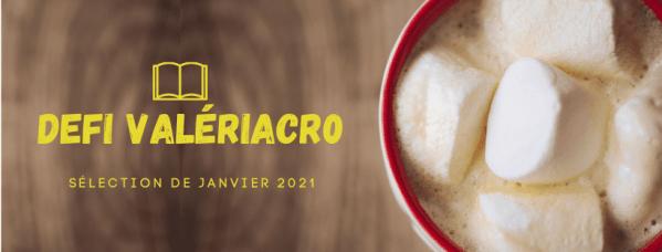 panneau défi ValériAcr0 fond bois tasse avec des marshmallows