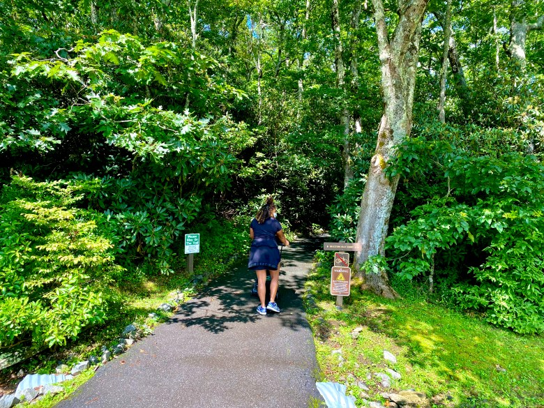 Mountain Vacation_Hiking Trail