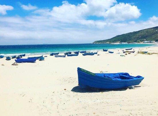playa dalia