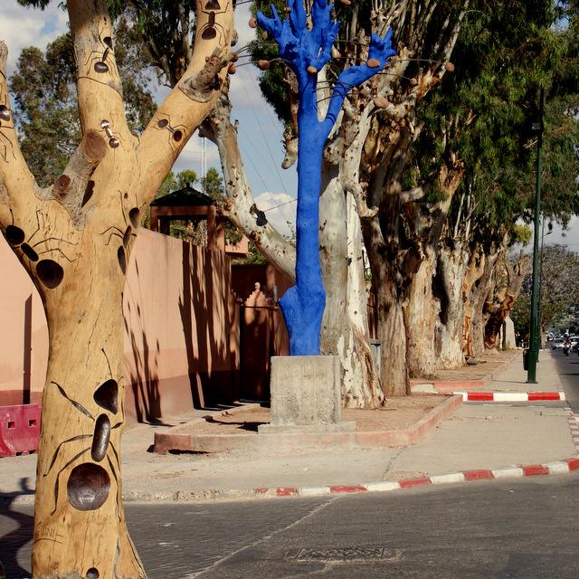 Marrakech Tree Art