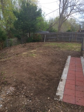 Cleaning up the mulch from the poorly constructed xeriscape backyard.