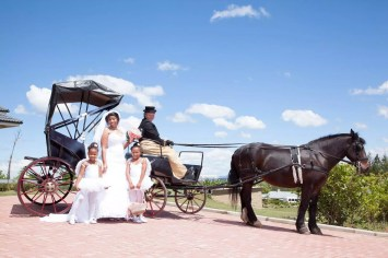 Horse and Carriages in KZN