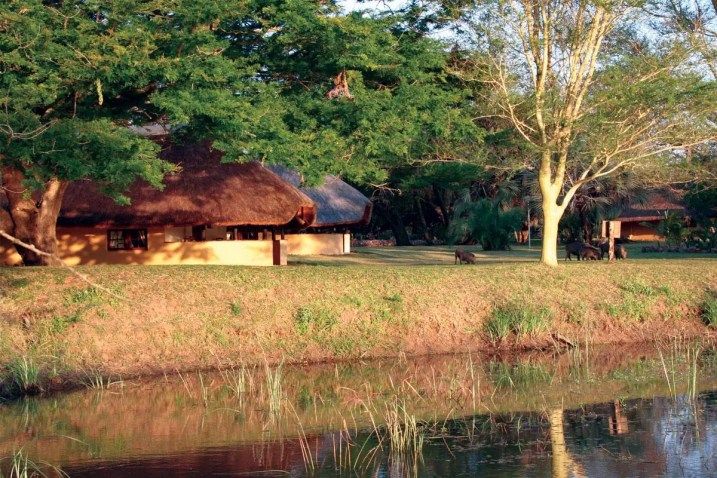 Bonamanzi honeymoons