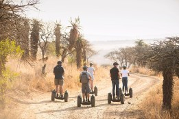 Segway Safari at Tala Collection Game Reserve