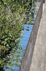 Meredith Frances Lynch: Sky Painting #2013.1 (2013). Glass silver mirror, brick fence line, sky, garden. Approx. 9,000 x 230 x 4mm. 3 Riverdale Ave