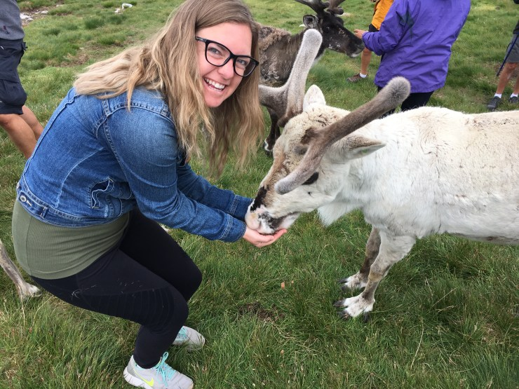 Travel Mistakes Blog Post, Kara feeding deer in Cairngorms National Park, Scotland.