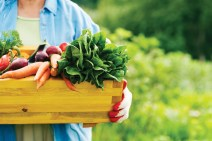 Six health-boosting reasons why you should toil in the soil this summer. http://marriottschool.uberflip.com/i/325416/9