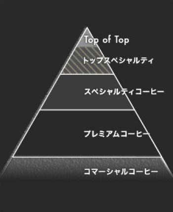 coffeeピラミット