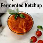 Small bowl of fermented ketchup with a basil garnish.