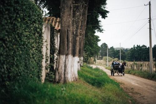 Irwin & Kris - Daniel Lopez Perez - Wedding Photographer Guatemala - 034