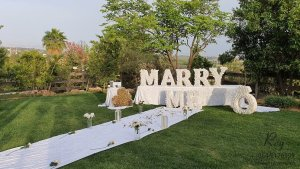 הצעת נישואין בפארק, הצעת נישואין בפארק