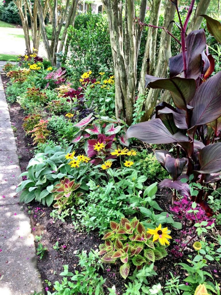 Pinehurst Garden