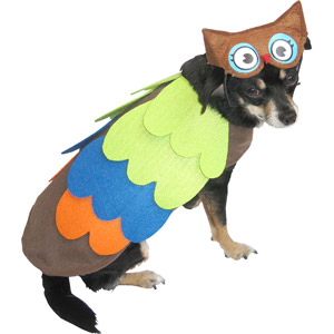 dog in owl costume