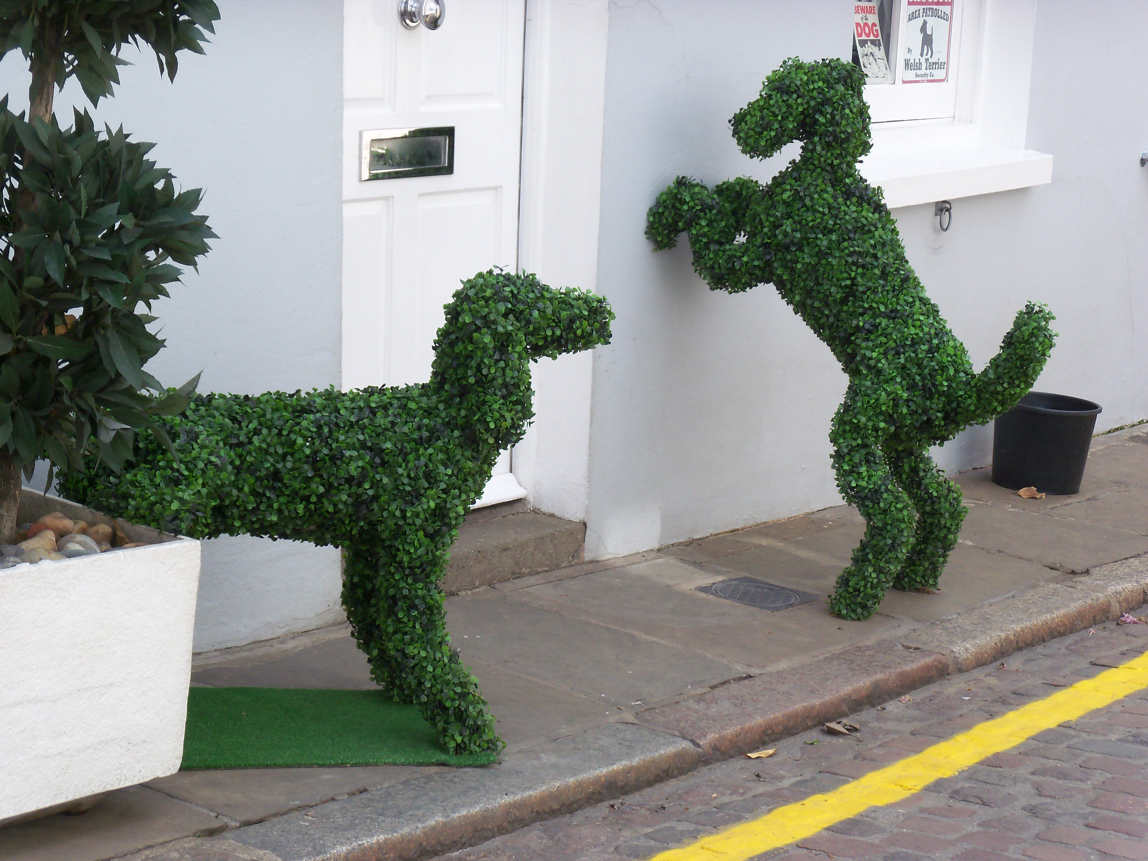 topiary dogs