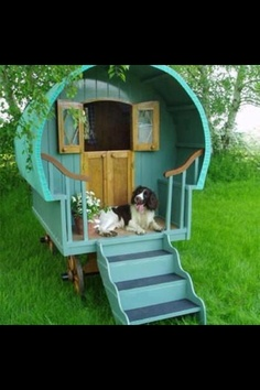 dog in playhouse