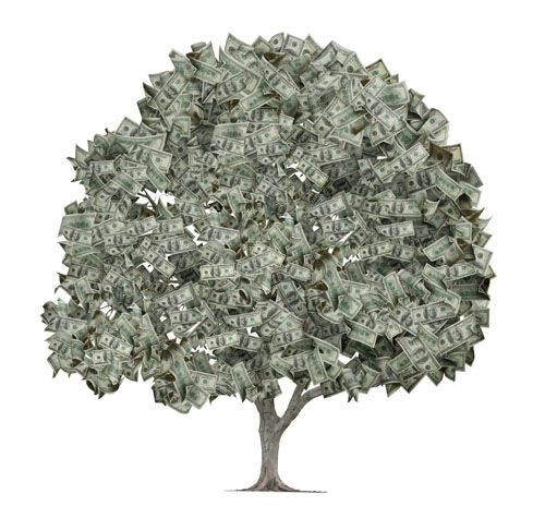moneytree11