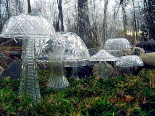 mushroom sowanddipity.com