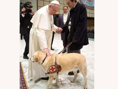 Dog at Vatican