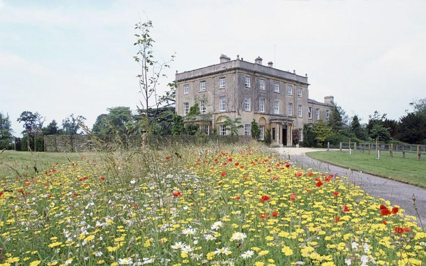 highgrove meadow